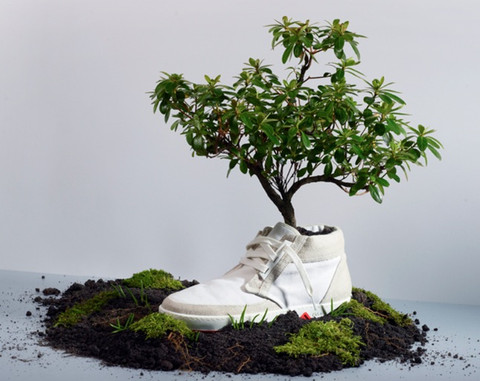 oat-biodegradable-shoes-photo1_large
