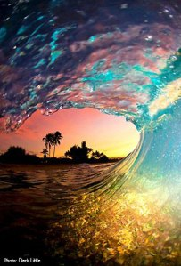 wave-clark