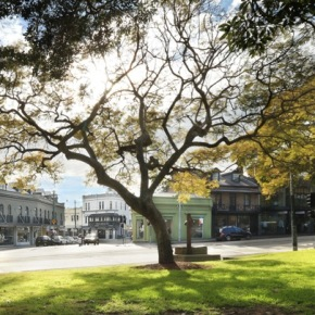 An interview with Theo Onisforou, founder of The Intersection Paddington &Bowral