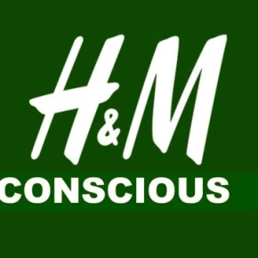 H&M support sustainable fashion