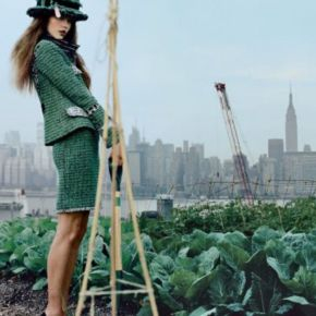 Elizabeth Park And The Power OfSustainability